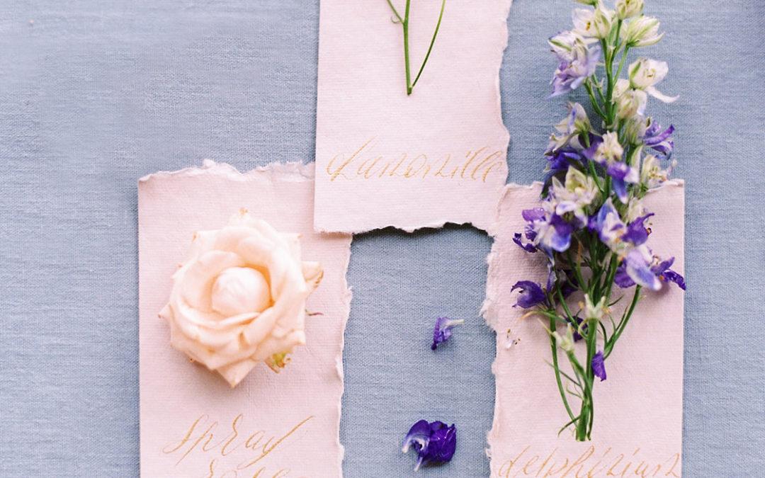 Sept fleurs d'été, la sélection